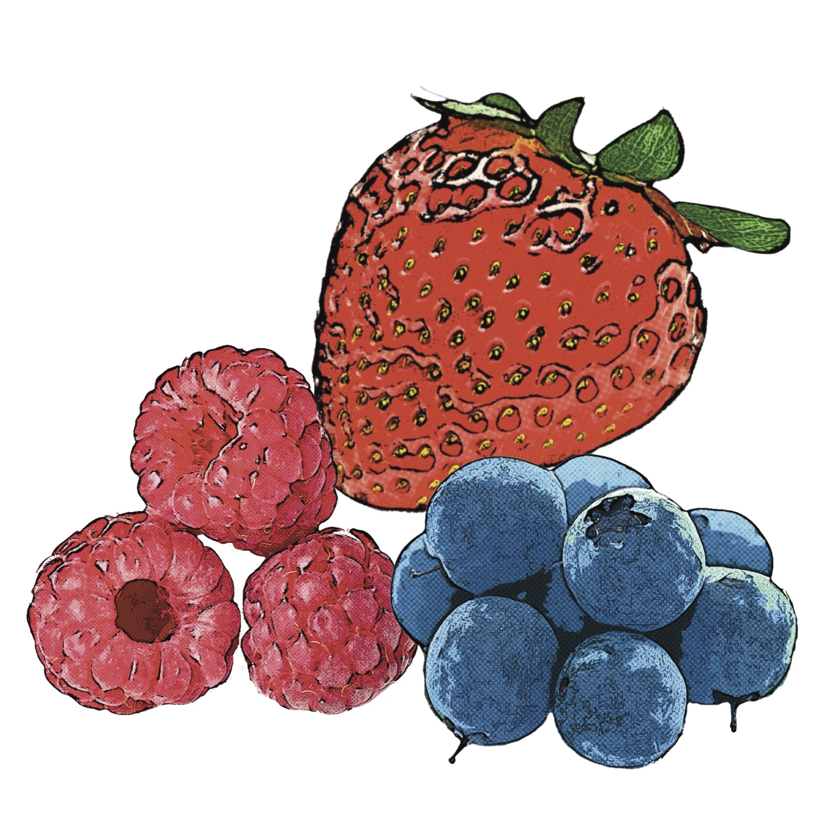 Find Berry Recipes