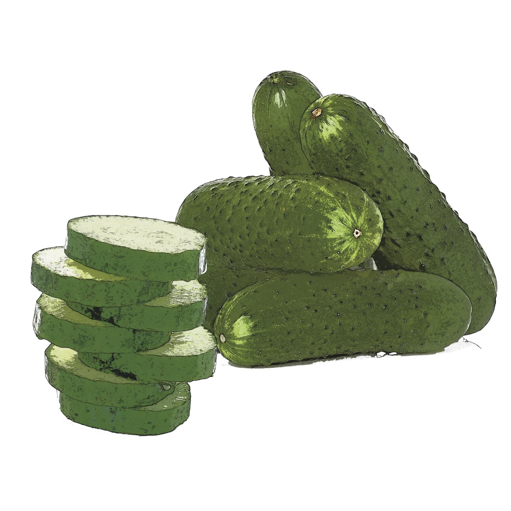 Find Cucumber Recipes