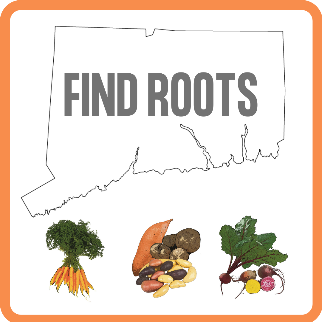 fIND rOOTS